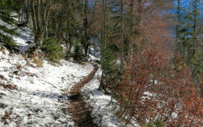 Wege – Irrwege, Umwege, Auswege, neue Wege, Wegkreuzungen – Lebensweg